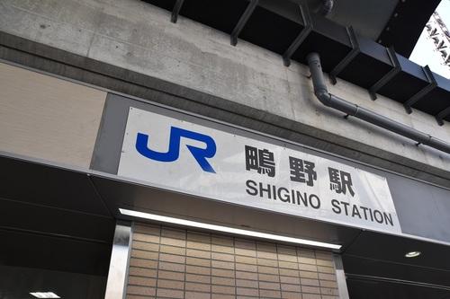 DSC_0724.JPG