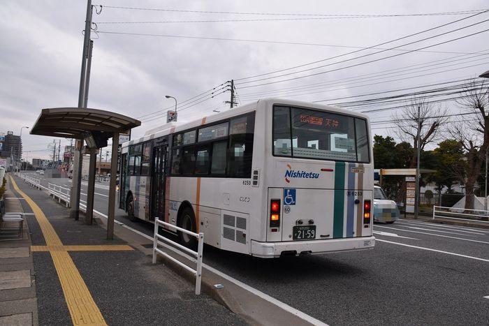 DSC_0802.JPG