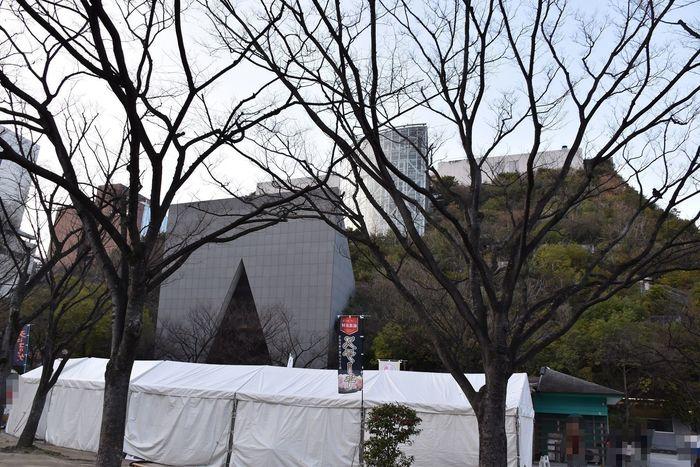 DSC_0986.JPG